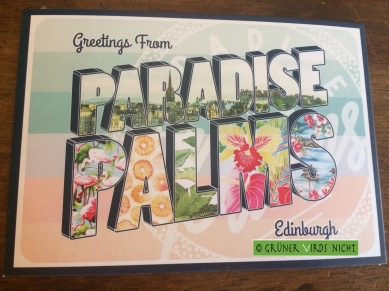 paradisepalm8